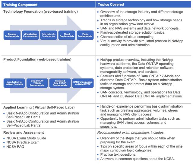 NCSA curriculum BINUS International Information Systems
