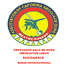 Capoeira Argola De Ouro Binus International